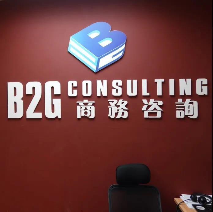 B2G商务咨询公司